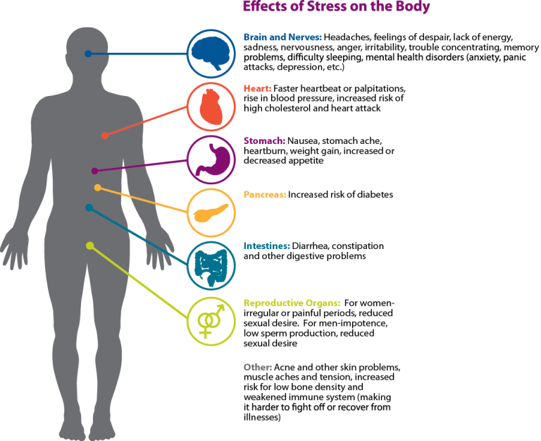 Effects of Stress Image